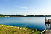 Bedok Reservoir / Sunday Morning activity