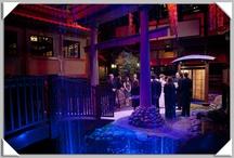 Benihana in Las Vegas / Benihana is a unique Las Vegas wedding venue / by chapelle de l'amour