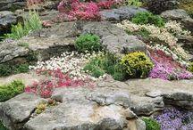 giardini roccioso