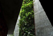 //Green-wall