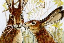 rabbit stuff / by Farp St