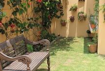 Mi pequeño jardín / Mi pequeño jardín