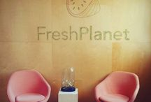 Where the Magic Happens / FreshPlanet office in NYC