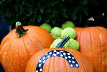 Fall Decorating / by Lisa Sharp
