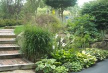 Small Yard - Slope / by Pam Thompson