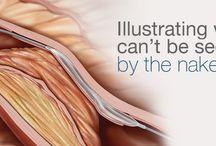 medical illustration inspiration