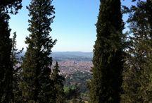 Unterwegs in der Toskana / Unterwegs in Florenz und in der Toskana - Reiseberichte und Reisetipps