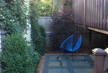 dream backyard  / by Laura Novy