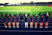 Cheerleading / Quotes which I can agree on as a cheerleader