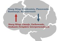 PSYCHOTERAPIA PSYCHOLOGIA