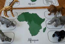 continents et animaux