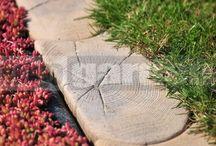 Imitácia dreva v záhrade