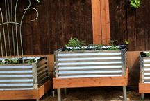 Garden and outdoor projects