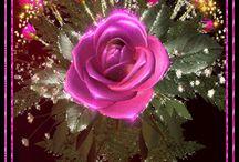 rózsa gif képek