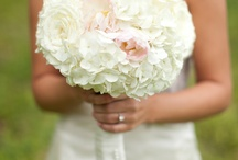 Wedding Ideas / by Kathryn Hart