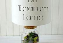 DIY lamp terrarium