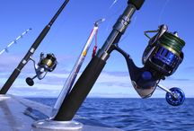 Spinning Reels / Great reviews on all the latest fishing and spinning reels. Helpful tips and guides to have a great time out on the water.