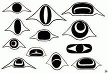 NW Native Formline design elements