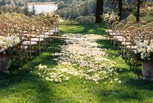 MA: Aisles / Walk into the arms of the one you love down these dreamy aisles by Marilyn Ambra Party Consultants