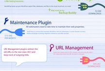 Wordpress / Tips for building and maintaining a wordpress site