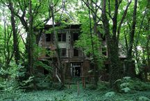 Ghost Places / Abandoned cities, wild forests...