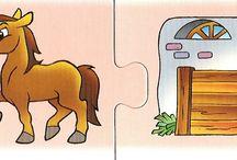 zwierzęta i ich dom