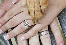 Pets & Weddings / by DIY Weddings® Magazine