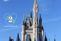 Tips for Disney World / by Bettylynne Cleary-Moeller