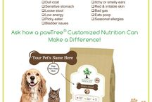 Pet Food Plan / Make a difference in the lives of pets by feeding and nurturing them with quality customized nutrition plan to meet their individual needs.