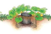 Ogrodnictwo/dom