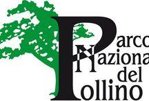 """places and activities in the Pollino national park / le """"terre alte"""" della Calabria e l'area protetta più grande d'Italia raccontate attraverso immagini: la natura, le tradizioni, le attività, le esperienze di luoghi """"narranti"""""""