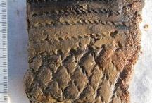 Prehistoric Scandinavia / The prehistoric periodes of Scandinavia: Stone Age 8000-1800 bc.  Bronze Age 1800-500 bc.  Iron Age 500 bc -1030 ad.