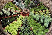 DIY Κήπος