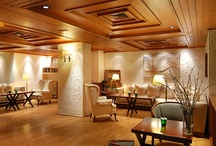 Lounges / Some guests love to read, others to have their meeting in a quiet corner, others to hook their laptops at the internet. We believe that our stylish lounges have been long famous for their great character and tremendous hospitality.