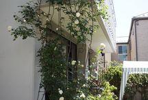 My Garden / Garden, DIY, Paiving, Mortar Arts, Patio Desing