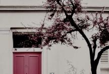 Inspiration - Doors / Doors to my dreams