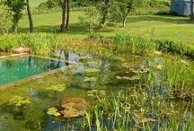 Tájépítészet -- Landscape Architecture