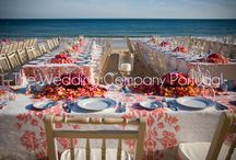 Beach Weddings by TWC / All photos are from TWC Weddings