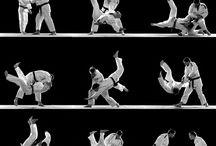 single combat - Единоборство / Вид спортивного состязания