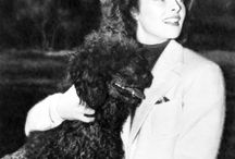 Celebrities and their poodles