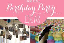 Birthday Party- Horse Themed