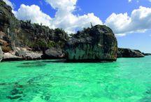 Dominik Cumhuriyeti Turu