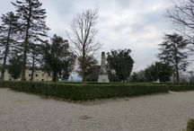 Girando per San Gimignano.... / A spasso con la macchina fotografica....