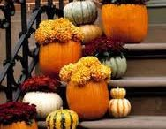 Thanksgiving Ideas! / We wish you all a happy Thanksgiving from your friends here at  Millennium Movers Inc!  Millennium Movers Inc 345 West 62nd Avenue #C200  Denver, CO 80216 303-650-2891 www.millenniummovers.com