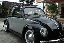Alvin Beetle