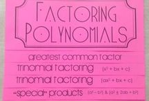 POLYNOMIALS / by Teresa Winings