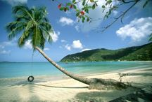 Tortola, BVI - See, Eat, Do / Things to do in Tortola!  After 20+ years in business on Tortola we have lots of suggestions for the top things to see, the best places to eat and the 'must do's' while you are on charter.