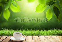 tea fest