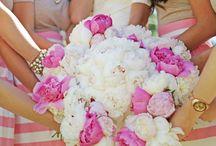 bride and bridesmaids photos