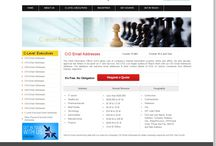 CIO Email List | CIO Mailing Database | CIO Email Address List / CIO Email List form Clevelexecuitves :- http://www.clevelexecuitves.com/cio-email-addresses.php